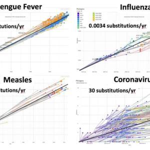 新型コロナウイルスのワクチン