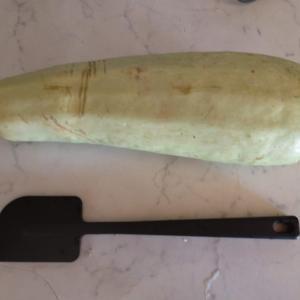 超巨大な野菜をもらう