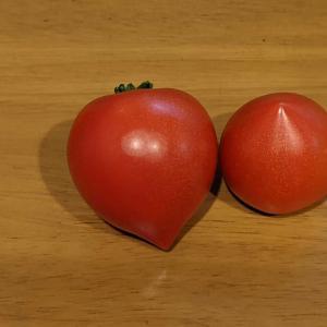 26個と27個目|水耕栽培のトマト