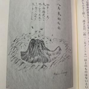 No.1972「『漂巽紀畧』はおもしろい、ジョン万次郎31」多言語習得61