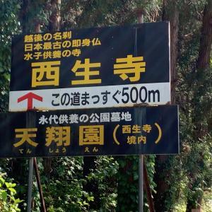 No.2088「ジョン万次郎と薩摩(土佐帰省)5、ジョン万次郎139」多言語習得171