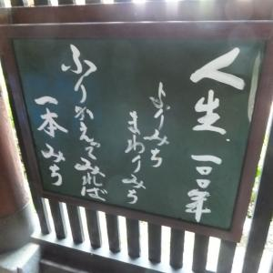 No.1738「間話:年金問題」4