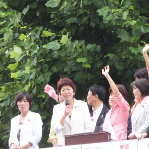 No.1744「間話:日本の命運がかかった参院選」