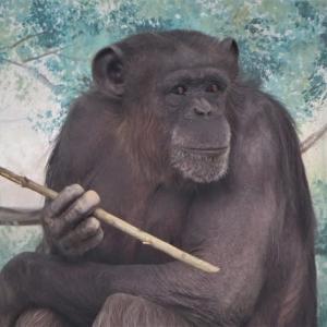 天王寺動物園デジスケッチ ③ ~昼下がりの憂鬱