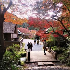 日向大神宮と蹴上インクライン ~京都探訪