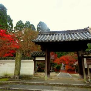 晩秋から初冬の風景 ~一休寺から水景園