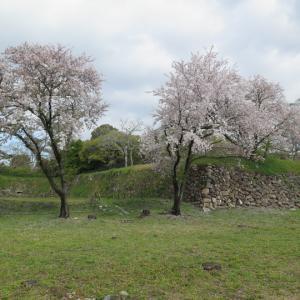 第404回:加納城(近世 美濃の重要拠点であった)