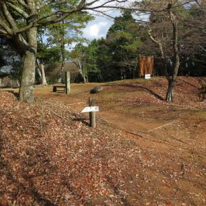 第422回:篠ノ城(長水城と連動し地域の支配拠点として機能した)