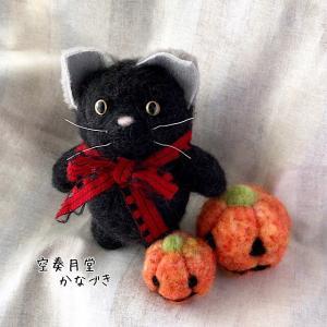 ハロウィンの黒猫とかぼちゃ
