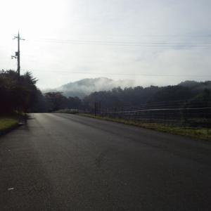 朝霧。晴れつつ。。。