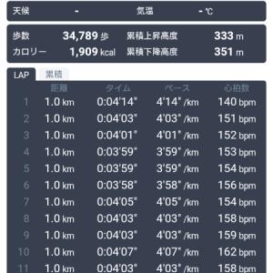 静岡マラソン2019 ②
