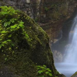 5月11日 笹の滝