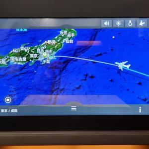ANAフライングホヌで弾丸ハワイ旅⑯・HNL→NRT(NH181)ファーストクラス-3