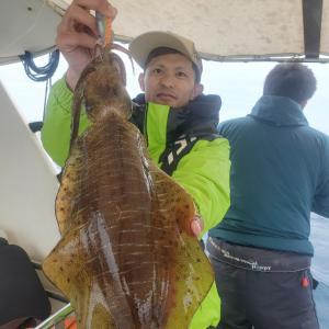 3月31日(火)Eフレンズティップランエギング、キャスティングエギング釣果!