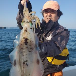 4月7日(火)Eフレンズティップランエギング、キャスティングエギング釣果!