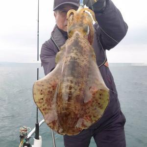 11月22日(日)Eフレンズ2号艇ティップランエギングチャーター便釣果!