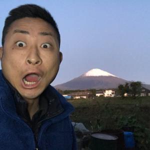 今日から富士山が雪化粧