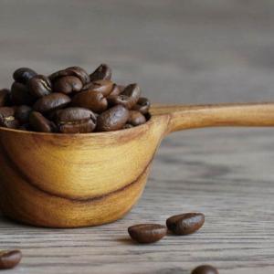 コーヒー豆♡