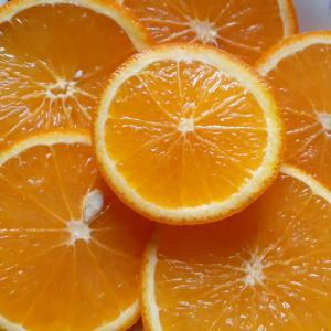 今日はオレンジ色