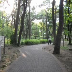 東村山24 東村山中央公園
