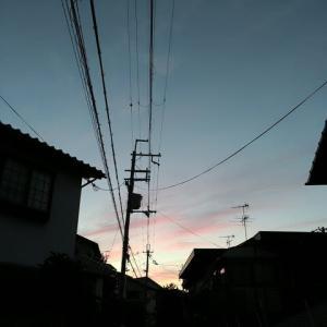 2021-01-21 Photo