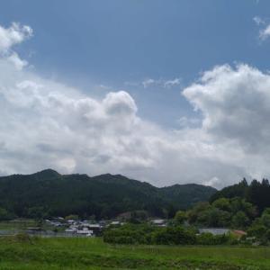 2021-06-15 Photo