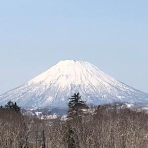 蝦夷富士「羊蹄山」キレイに撮れました。