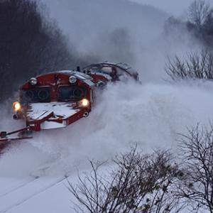 雪551レ DE15 1543 定番2か所 2020.1.24