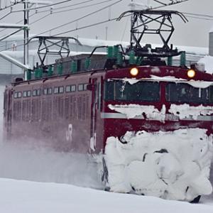 上越カッター(雪確認列車) 雪9741レ EF81 134 2021.1.20