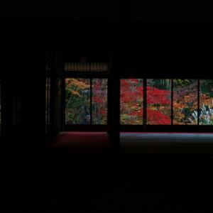 ~ 秋の彩り ~