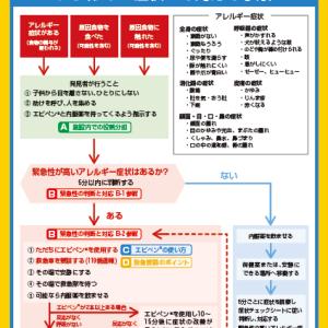 保存版「食物アレルギー緊急時対応マニュアル」(by東京都)
