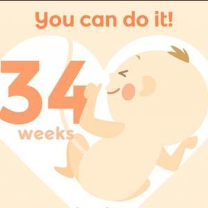 *妊娠34週目〜立体写真!4Dエコーの我が子の可愛さよ*