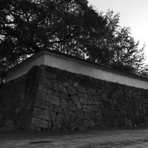 退勤路に秋を撮る(福岡市営地下鉄赤坂駅〜大濠公園駅間にて)