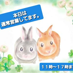 春の新作が明日から入荷します(^^)/