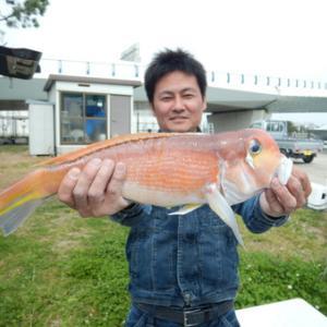 アマダイにアカムツに!高級魚祭り~☆