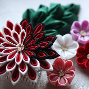 人気の大輪の剣菊。