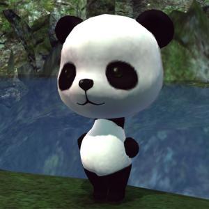 tera パンダの着ぐるみが当たりましたーヾ(〃^∇^)ノ