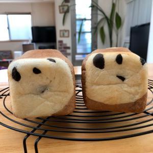 パンダさんのサンドイッチと 薩摩芋のチーズケーキ