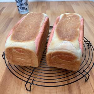切っても切ってもブタちゃんパン