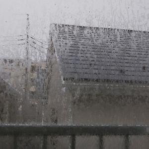 雷⚡️と雨️