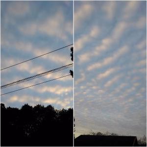 10月19日 終了間際ふと空を見たら❗