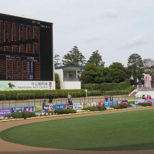 中山競馬場に行ってきました。