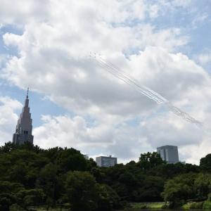 今日は東京2020の開幕日です。ブルーインパルスの展示飛行を見てきました。