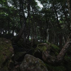 青木ヶ原樹海は自殺の名所ですが、他にもそのような場所があるようです
