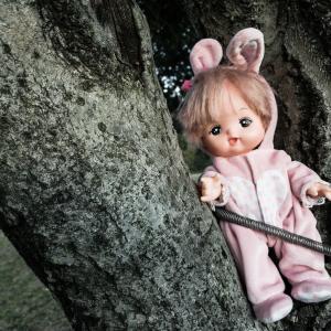 実家に母が若い頃買った?というセルロイド製?でネジを巻くとハイハイする人形がある