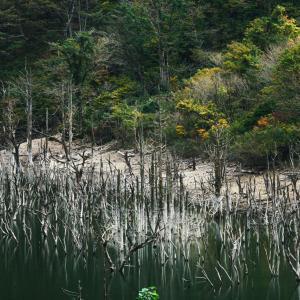 パチスロで負けたので、肝試し感覚で群馬県のとあるダムに行った。