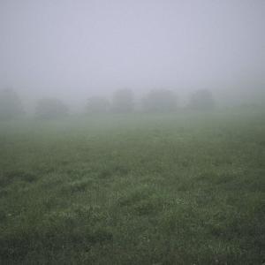 通い慣れた、地元の山道を歩いていた時のこと。 その日は朝から、ひどく濃い霧が出ていたという。