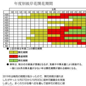 彼岸花と川と〆は落花生(^.^)