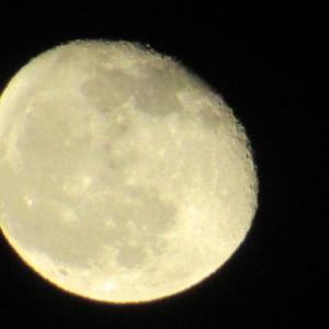 月が大きい