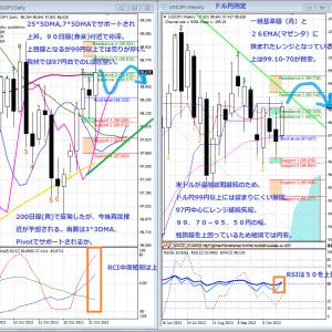 【米ドル・円】2013年11月2週目の米ドル円相場の見通し【USD/JPY】